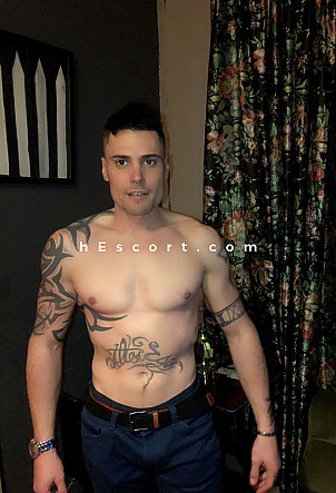 David - Male escort in Barcelona