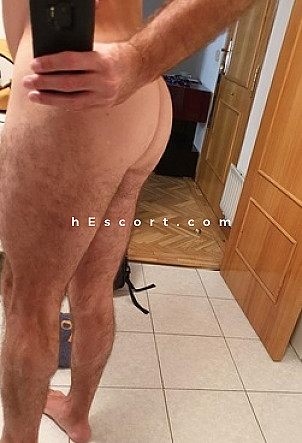 Rob - Male escort in Madrid