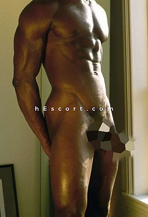 adams - Male escort in Madrid