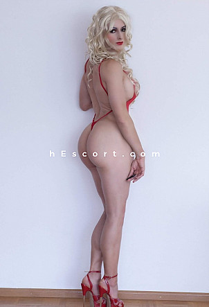 picattodigracia - Trans escort in Madrid