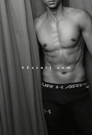 Kaywan - Male escort in Málaga